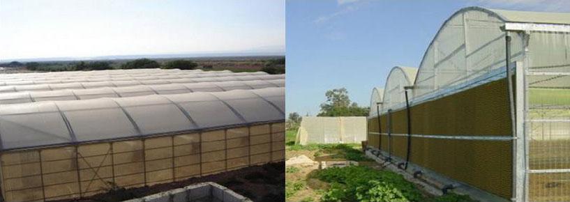 The-Chiller-Multi-Sided-Greenhouse-–-Model-800--MSC