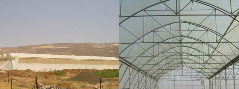 The-Multi-Sides-Greenhouse-–-Model-800--Ms