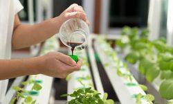 liquid-fertilizer