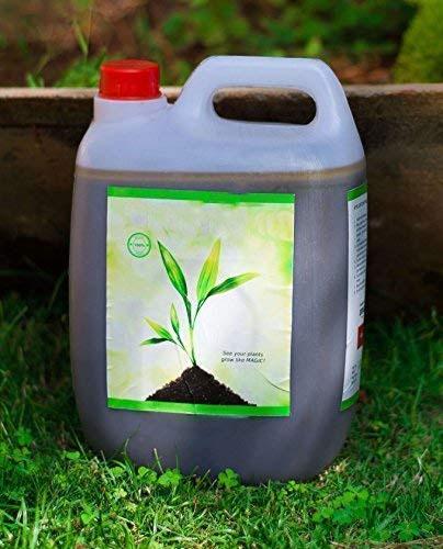 liquid-fertilizer-gallon