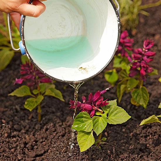 soluble-fertilizer-in-water